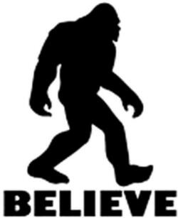 Car Stickers - Believe